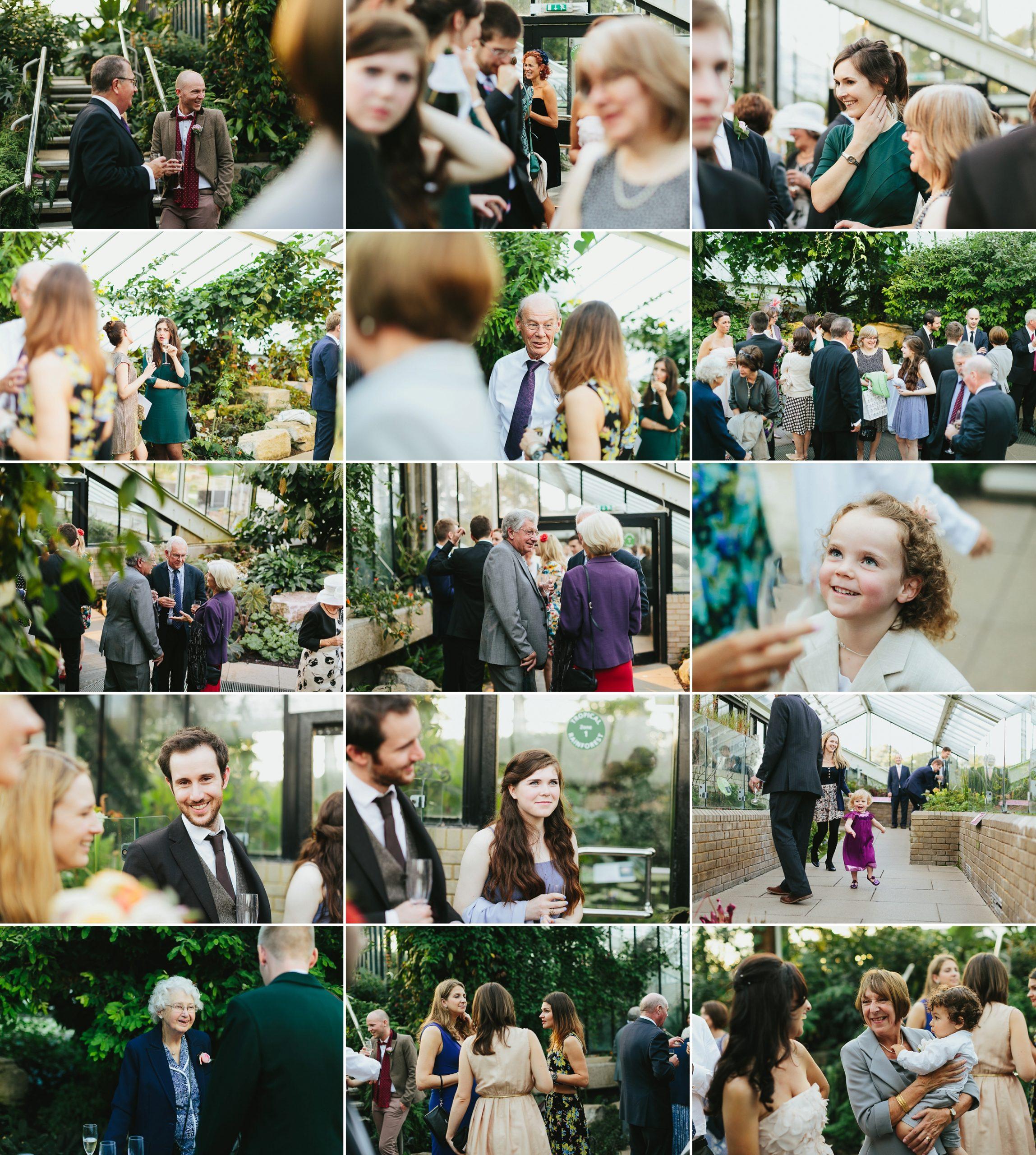 princess of wales conservatory wedding
