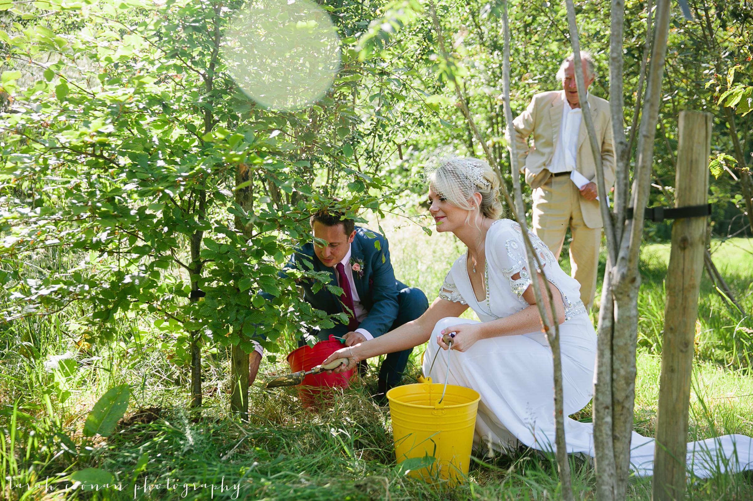 tree ceremony wedding