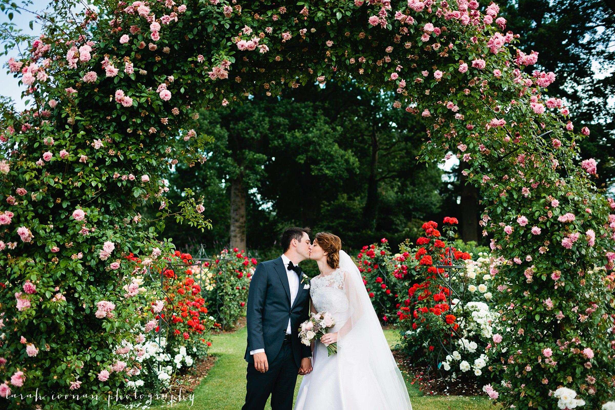 RHS Wisley rose garden June