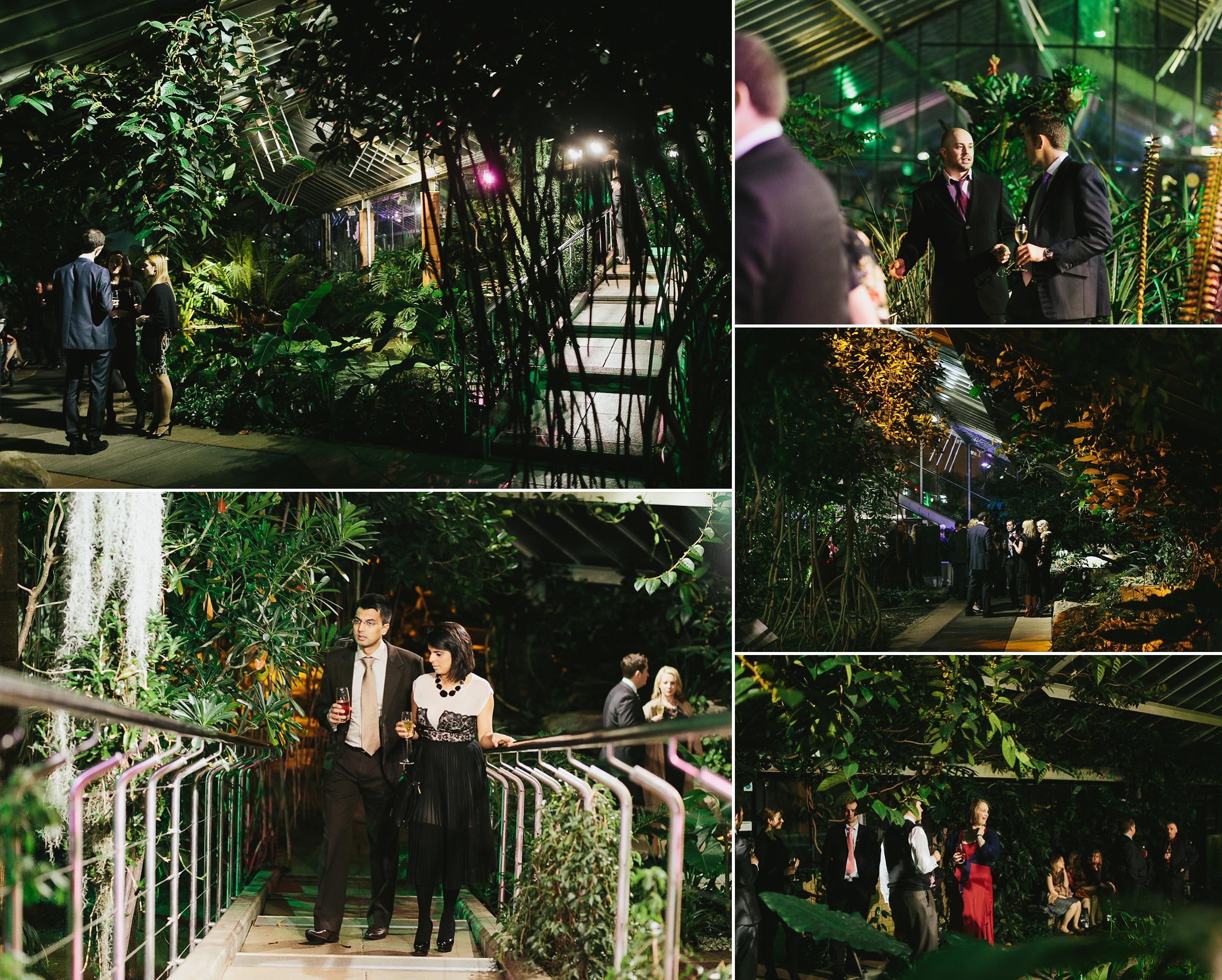 kew gardens wedding reception